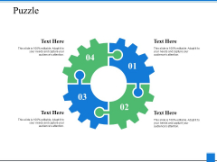 Puzzle Solution Ppt PowerPoint Presentation Icon Introduction