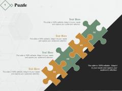 Puzzle Solution Ppt PowerPoint Presentation Portfolio Professional
