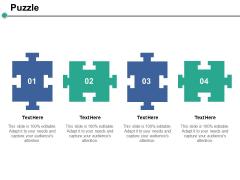 Puzzle Solution Ppt PowerPoint Presentation Summary Portfolio