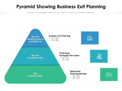 Pyramid Showing Business Exit Planning Ppt PowerPoint Presentation Icon Styles PDF