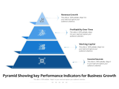 Pyramid Showing Key Performance Indicators For Business Growth Ppt PowerPoint Presentation Layouts Introduction PDF