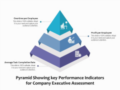 Pyramid Showing Key Performance Indicators For Company Executive Assessment Ppt PowerPoint Presentation Portfolio Rules PDF