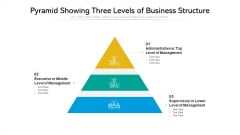 Pyramid Showing Three Levels Of Business Structure Ppt PowerPoint Presentation Gallery Icons PDF
