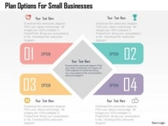 Plan Options For Small Businesses Presentation Template