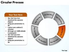 PowerPoint Designs Company Circular Process Ppt Process