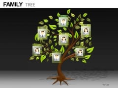PowerPoint Family Tree Slides