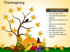 PowerPoint Presentation Designs Thanksgiving Ppt Backgrounds