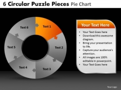 PowerPoint Slides Process Circular Puzzle Ppt Slide
