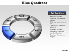 Ppt Blue Quadrant Circular Nursing Process PowerPoint Presentation Templates