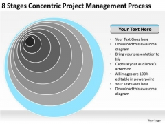 Project Management Process Ppt Business Plan Examples For New PowerPoint Templates