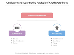 Qualitative And Quantitative Analysis Of Creditworthiness Ppt PowerPoint Presentation Styles Gridlines