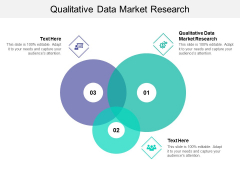 Qualitative Data Market Research Ppt PowerPoint Presentation Layouts Gallery Cpb