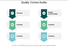 Quality Control Audits Ppt PowerPoint Presentation Show Cpb