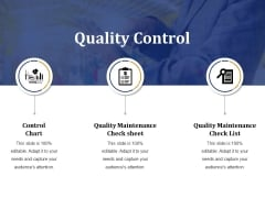 Quality Control Ppt PowerPoint Presentation Gallery Structure