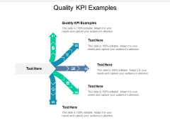 Quality Kpi Examples Ppt PowerPoint Presentation File Visuals