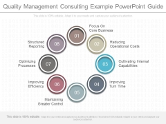 Quality Management Consulting Example Powerpoint Guide
