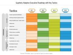 Quarterly Adaptive Executive Roadmap With Key Tactics Summary