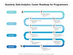 Quarterly Data Analytics Career Roadmap For Programmers Icons