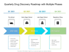 Quarterly Drug Discovery Roadmap With Multiple Phases Themes