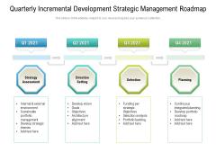 Quarterly Incremental Development Strategic Management Roadmap Portrait