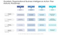 Quarterly Organizational Business Intelligence Action Plan Maturity Roadmap Information