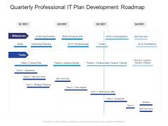 Quarterly Professional IT Plan Development Roadmap Summary