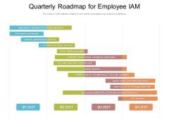 Quarterly Roadmap For Employee IAM Demonstration
