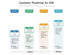 Quarterly Roadmap For IAM Pictures