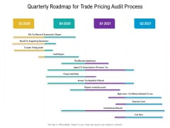 Quarterly Roadmap For Trade Pricing Audit Process Structure