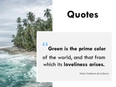 Quotes Communication Ppt PowerPoint Presentation Gallery Clipart