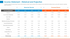 Raising Company Capital From Public Funding Sources Income Statement Historical And Projection Rules PDF