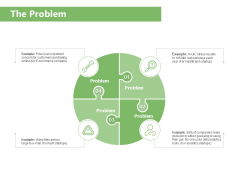 Raising Funds Company The Problem Ppt Pictures Brochure PDF