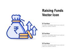 Raising Funds Vector Icon Ppt PowerPoint Presentation Professional Slide Portrait