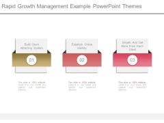Rapid Growth Management Example Powerpoint Themes