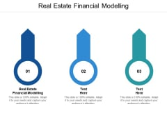 Real Estate Financial Modelling Ppt PowerPoint Presentation Professional Slides Cpb
