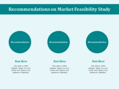 Recommendations On Market Feasibility Study Ppt PowerPoint Presentation Infographic Template Guide