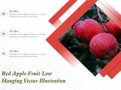 Red Apple Fruit Low Hanging Vector Illustration Ppt PowerPoint Presentation File Skills PDF