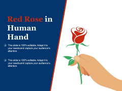 Red Rose In Human Hand Ppt PowerPoint Presentation Styles Slides