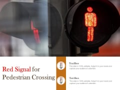 Red Signal For Pedestrian Crossing Ppt PowerPoint Presentation Pictures Guide
