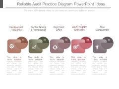 Reliable Audit Practice Diagram Powerpoint Ideas