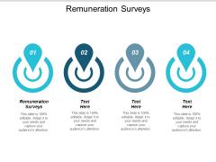 Remuneration Surveys Ppt PowerPoint Presentation Infographic Template Format Ideas Cpb
