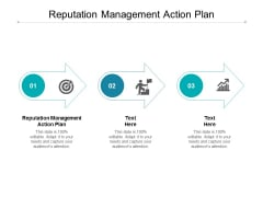 Reputation Management Action Plan Ppt PowerPoint Presentation Styles Outfit Cpb