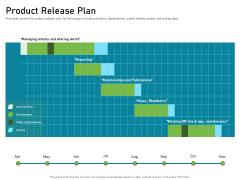 Requirements Governance Product Release Plan Portrait PDF