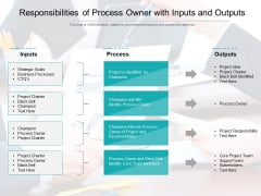 Responsibilities Of Process Owner With Inputs And Outputs Ppt PowerPoint Presentation Gallery Inspiration PDF
