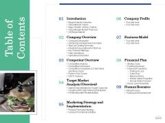 Restaurant Business Setup Business Plan Table Of Contents Information PDF