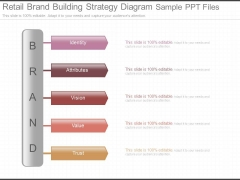 Retail Brand Building Strategy Diagram Sample Ppt Files