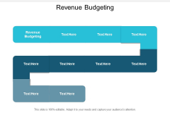 Revenue Budgeting Ppt PowerPoint Presentation Summary Show Cpb
