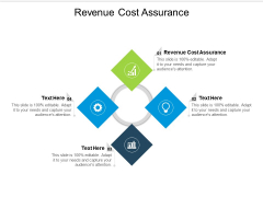 Revenue Cost Assurance Ppt PowerPoint Presentation File Structure Cpb