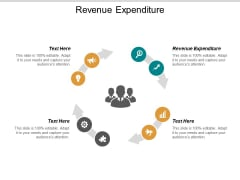 Revenue Expenditure Ppt PowerPoint Presentation File Samples Cpb