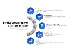 Revenue Growth Plan With Market Segmentation Ppt PowerPoint Presentation Summary Slideshow